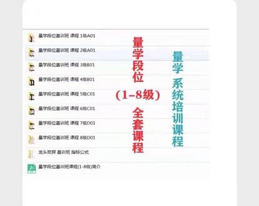 龙头密探仲展量学段位集训班课程(1-8级)